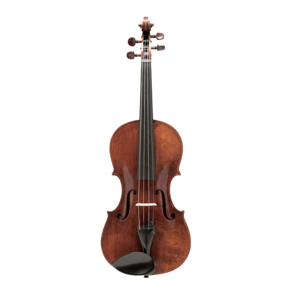 Violine von Domenico Degani aus Montagnana, 1874