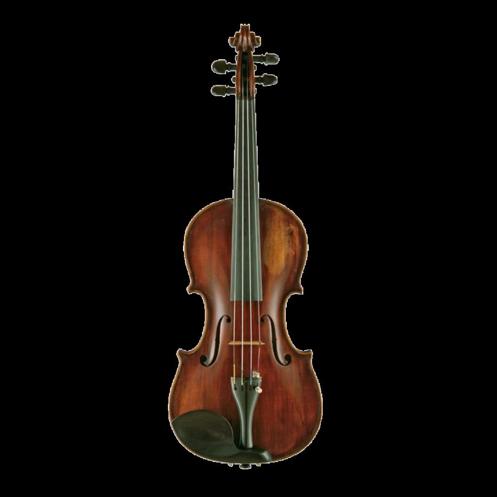 Violine von Armando Monterumici aus Bologna 1903