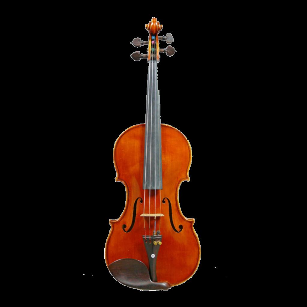 Violine von Enrico Rocca aus Genova, 1914